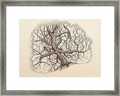Framed Print featuring the drawing Tree In Winter II by Kerry Beverly
