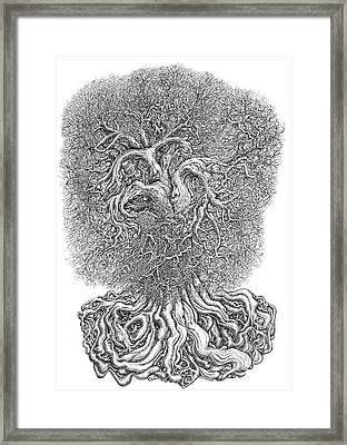 Tree Framed Print by Joe MacGown