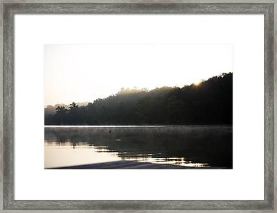 Tree Landscape With Water Framed Print by Gillham Studios