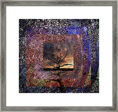 Tree Layers 4 Framed Print by Dorothy Berry-Lound