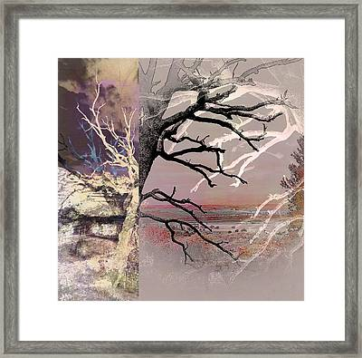 Tree Layers 8 Framed Print