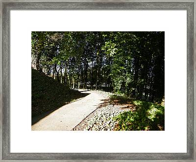 Framed Print featuring the photograph Tree Lined Path by JLowPhotos