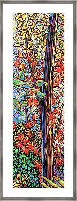 Tree Long Framed Print by Nadi Spencer