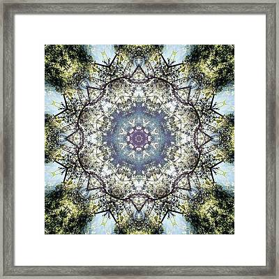 Tree Mandala Framed Print