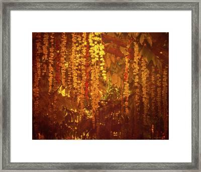 Tree Melancholy Framed Print