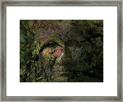 Framed Print featuring the photograph Tree Memories # 18 by Ed Hall