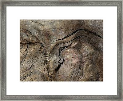 Framed Print featuring the photograph Tree Memories # 23 by Ed Hall