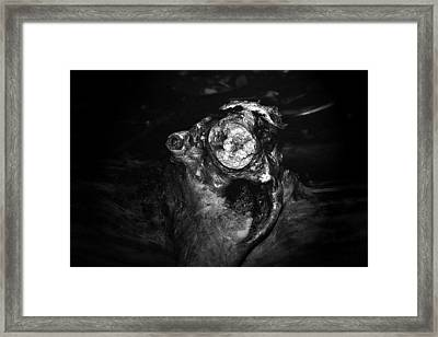 Tree Monster Framed Print by Celestial  Blue