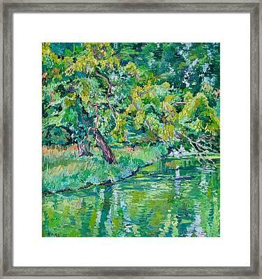 Tree Near A Pond In Lednice Castle Park Framed Print by Vitali Komarov