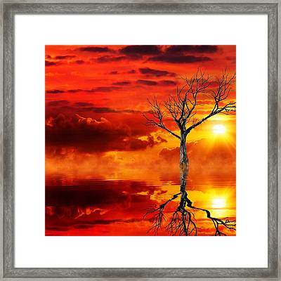 Tree Of Destruction Framed Print