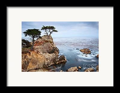 Monterey Framed Prints