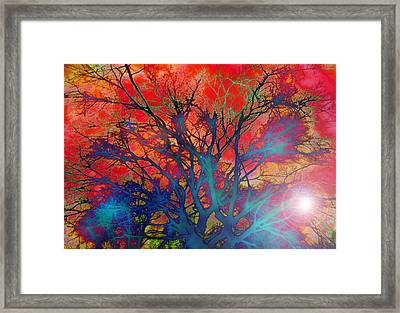 Tree Of Ghosts Framed Print by Linnea Tober