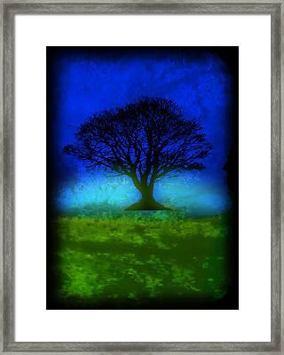 Tree Of Life - Blue Skies Framed Print by Robert R Splashy Art