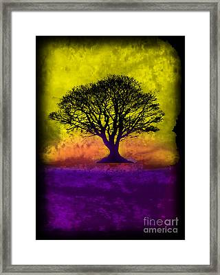 Tree Of Life - Yellow Sunburst Sky Framed Print by Robert R Splashy Art