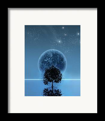 Tree Framed Prints