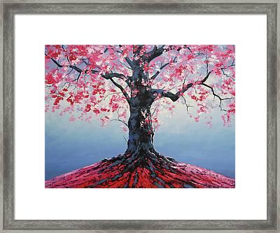 Tree Of Life Framed Print by Graham Gercken