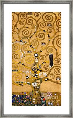 Tree Of Life Framed Print by Gustav Klimt