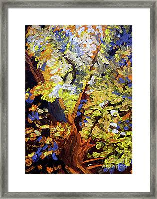 Tree Of Life Framed Print by Jasna Dragun