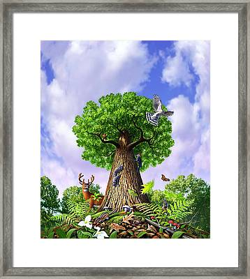 Tree Of Life Framed Print by Jerry LoFaro
