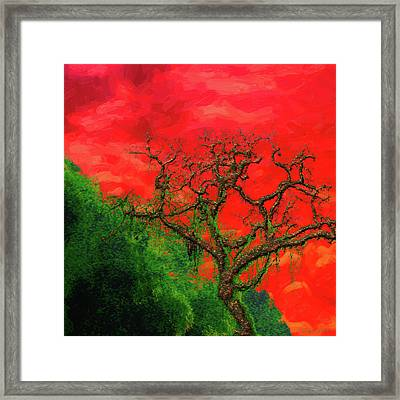 Tree Of Life - Red Dawn Framed Print