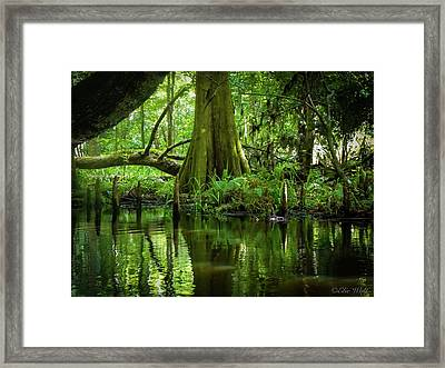 Tree Of My Soul Framed Print