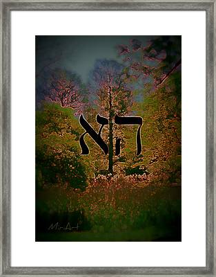 Framed Print featuring the photograph Tree Of The Mind by Miriam Shaw