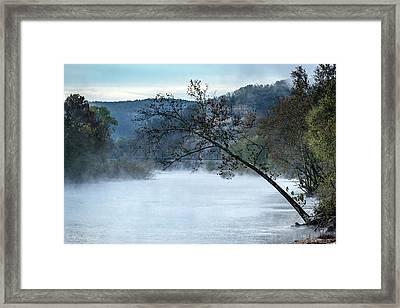 Tree Over Gasconade River Framed Print by Jae Mishra