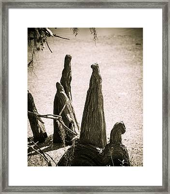 Tree People Framed Print by Marilyn Hunt