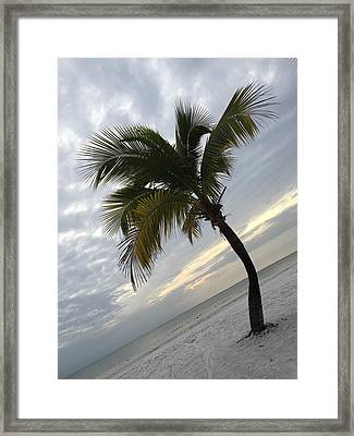 Tree Pose Framed Print by Jean Marie Maggi