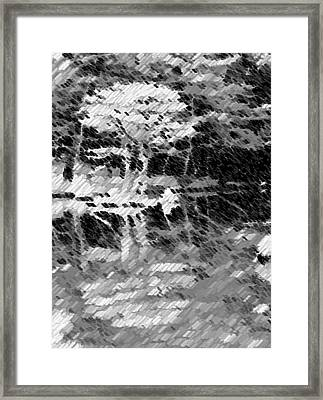 Tree Reflecting In Pond Framed Print by Curtis Schauer