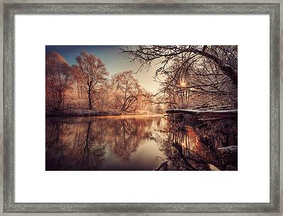Tree Reflection In River Framed Print by Philippe Sainte-Laudy Photography