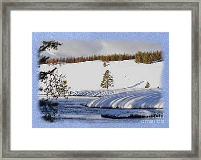 Framed Print featuring the photograph Tree Shadows Along The Madison by Kae Cheatham