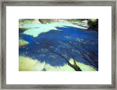 Tree Shadows Framed Print by Anita Stoll