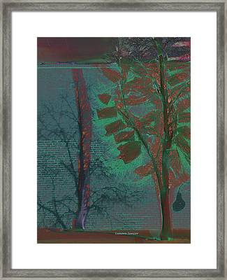 Tree Shadows At Midnight Framed Print by Lenore Senior