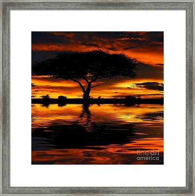 Tree Silhouette And Dramatic Sunset Framed Print