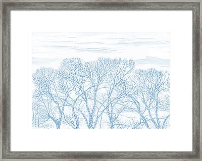 Framed Print featuring the photograph Tree Silhouette Blue by Jennie Marie Schell