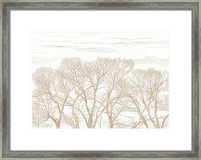Framed Print featuring the photograph Trees Silhouette Brown by Jennie Marie Schell