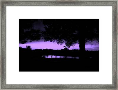 Tree Silhouette By The Pond Purple Framed Print by Thomas Woolworth