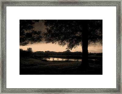 Tree Silhouette By The Pond Sepia Framed Print by Thomas Woolworth