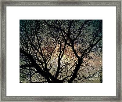 Framed Print featuring the photograph Tree Silhouette With Stars. by Yulia Kazansky