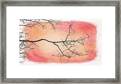 tree silhouettes III Framed Print by Priska Wettstein