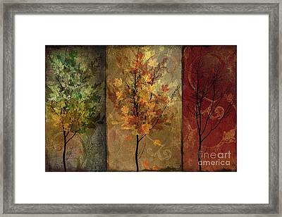 Tree Story Framed Print by Mindy Sommers