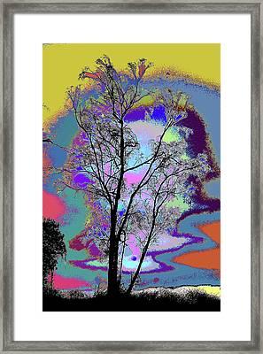 Tree - Story Of Life Framed Print
