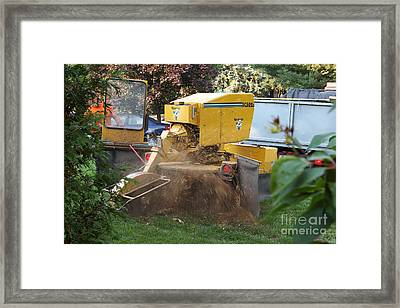 Tree Stump Removal Framed Print by Scimat