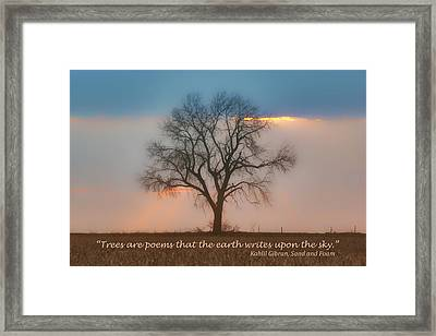 Tree - Sunset - Quotation Framed Print by Nikolyn McDonald