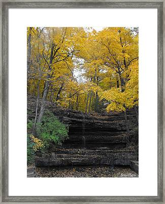 Tree Surrounded Waterfall Framed Print