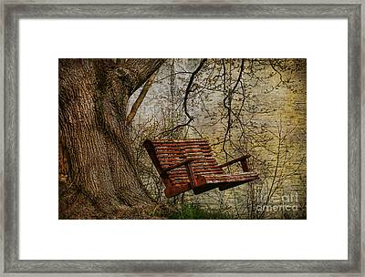 Tree Swing By The Lake Framed Print