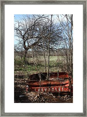 Tree The Usa  In A Chevrolet Framed Print