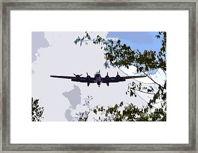 Tree Top Fly Er Framed Print by David Lee Thompson