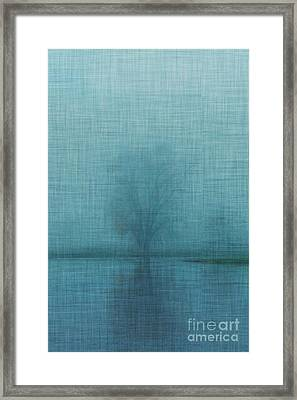 Tree Triptych Middle Framed Print